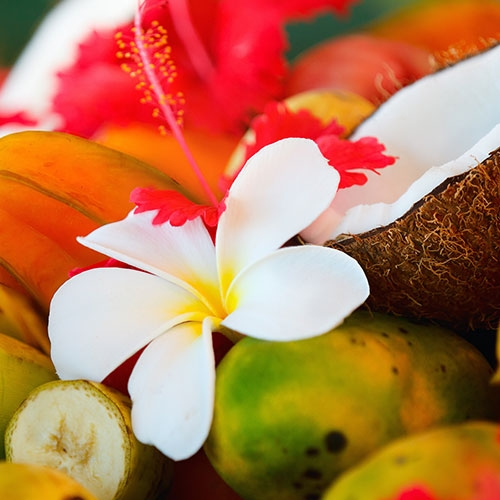 Tropical Passion * BBW Type Fragrance Oil